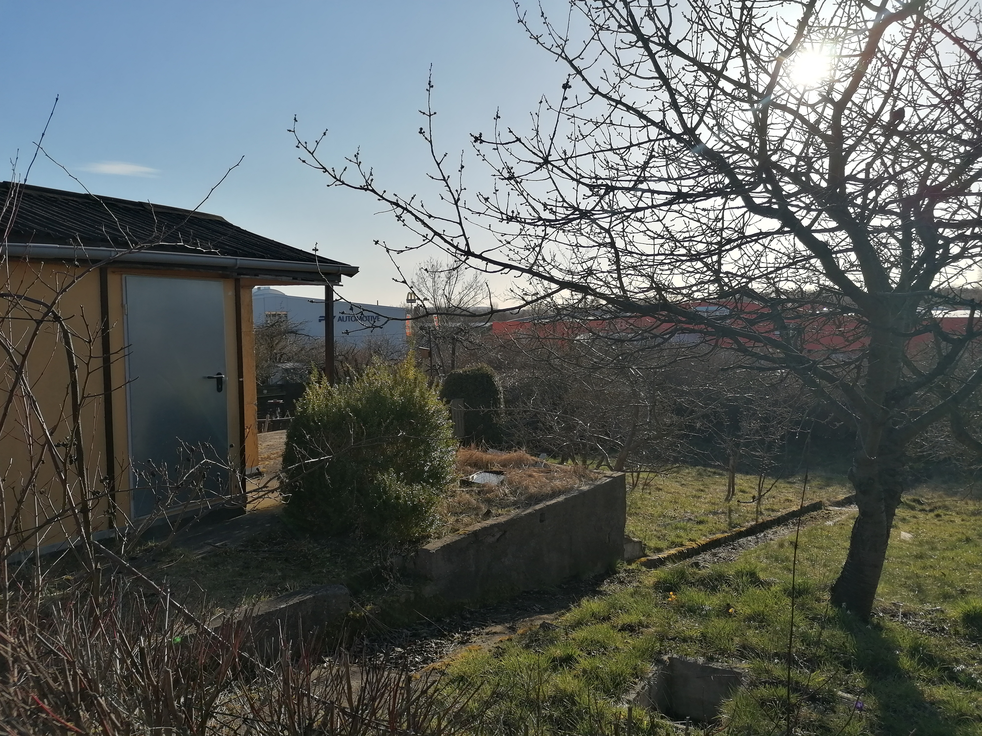 Foto von einem etwas verwildertem Garten. Links eine kleine Hütte mit Metalltür. Rechts ein Obstbaum, ohne blätter. Im Vordergrund Büsche ohne Blätter. Das Gelände fällt etwas ab. Der Rasen ist länger nicht gemäht worden. Der Himmel ist blau und die Sonne scheint durch die Äste des Baumes