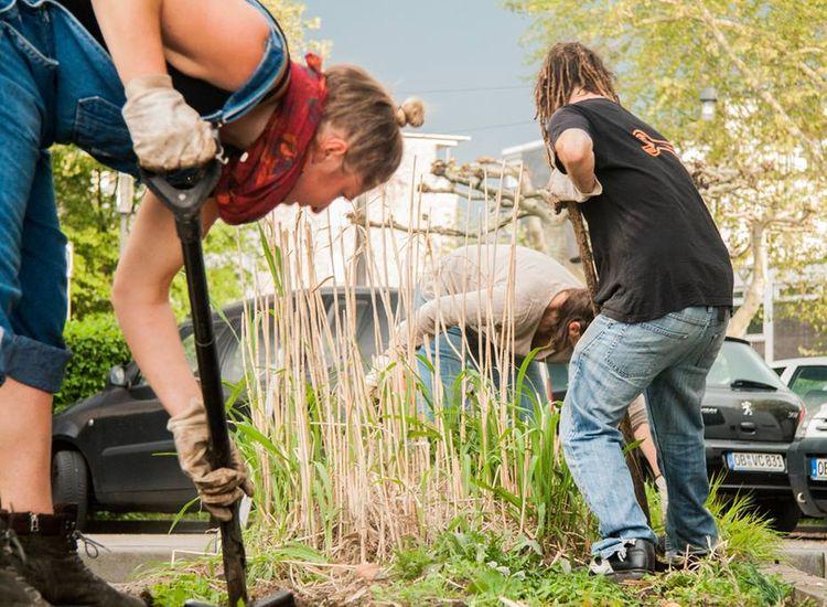 Drei Personen graben mit Spaten in einem kleinen Beet in der Stadt.