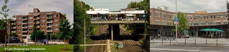 Drei verschiedene Fotos vom Gebiet: Tannenbusch