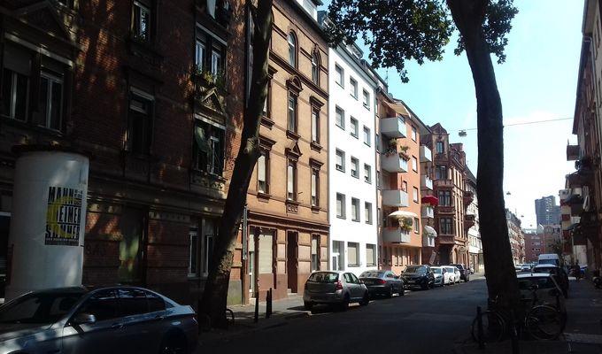 Der Blick geht entlang einer Straße mit Wohnhäusern im Sommer. Vorne stehen zwei Bäume.